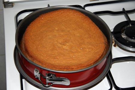 Pan di spagna sfornato